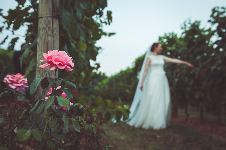 Irene Alberto Matrimonio a Villa Luisa Francesca Studio Fotografico NatAn 0102