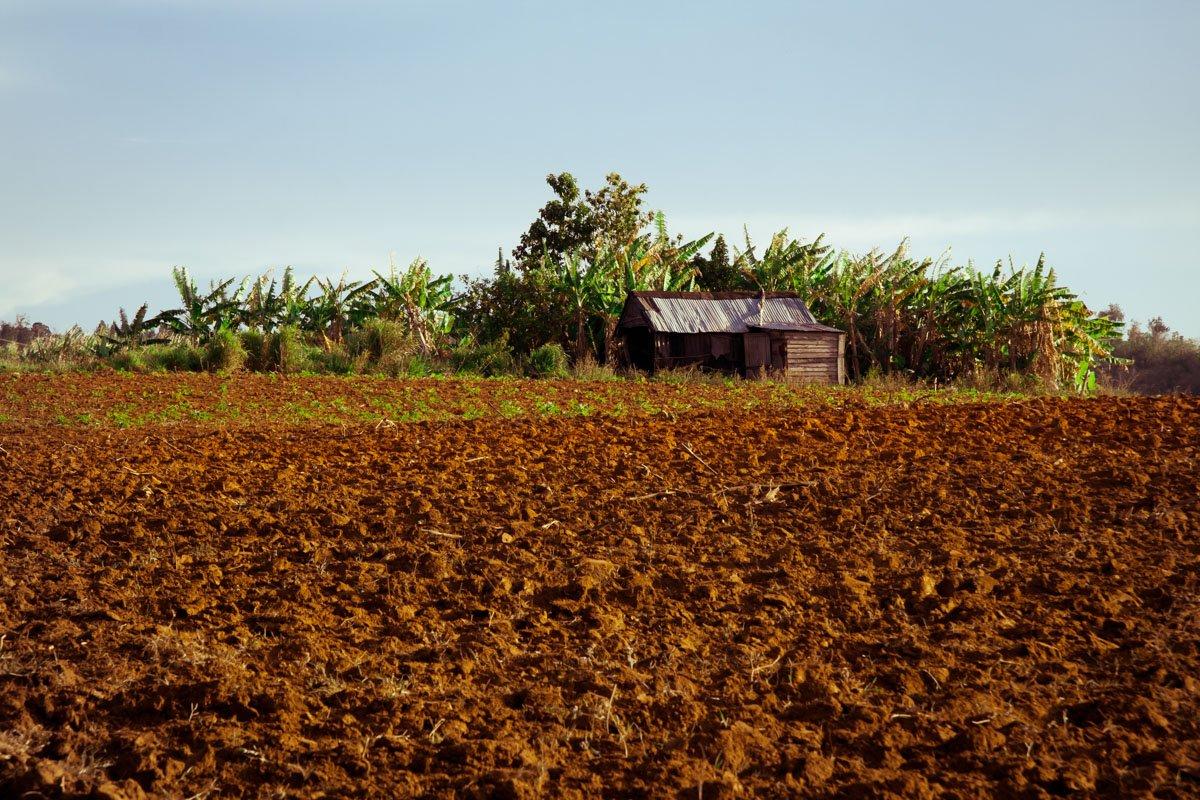 Reportage Viaggio Cuba – 091